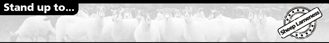 Sheep Lameness Banner